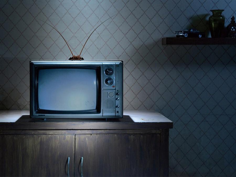 В России может появиться образовательный телеканал