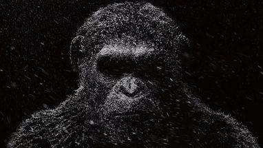 """Вышел новый трейлер фильма """"Планета обезьян: Война"""""""