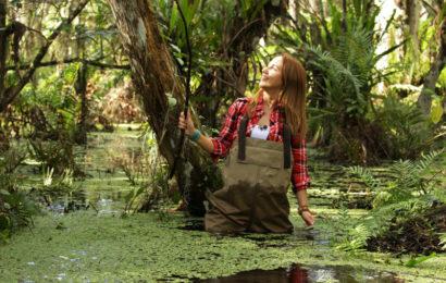 Телеканал «Живая Планета» выбрал символы Флориды